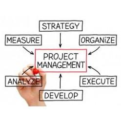 Project Management. Come gestire un progetto a scuola
